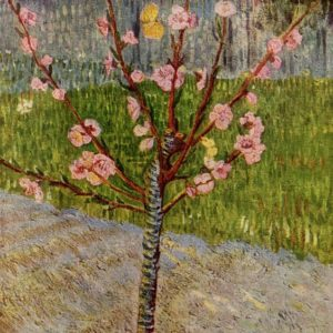 Almond Tree Sapling by Vincent Van Gogh