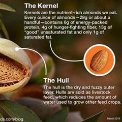 3 parts of a California almon