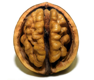 Walnuts for brain health